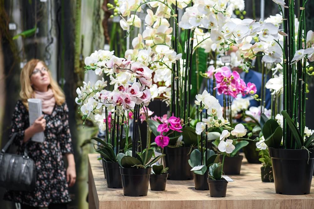 Auf der Floradecora finden sich Blumen und Zierpflanzen soweit das Auge reicht. Abbildung: Messe Frankfurt Exhibition GmbH