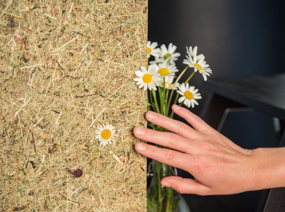 Natürliche Beschichtungen: von Gras bis Wolle