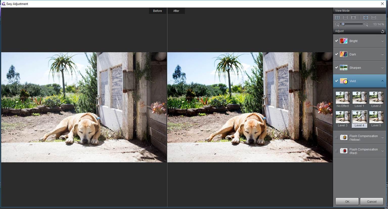 Automatische Bildverbesserung mit Foxit Studio Photo. Abbildung: Foxit Software