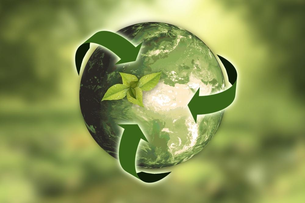 Nachhaltiges Beschaffen: Was Unternehmen wissen müssen