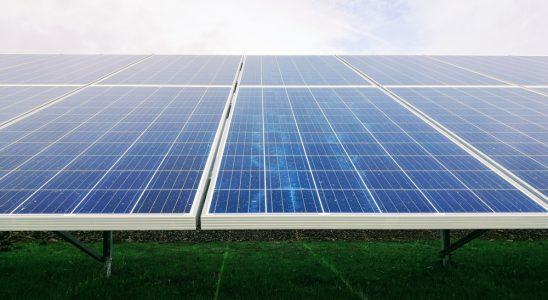 Nachhaltiges Handeln muss ein wirtschaftlicher Standard sein. Abbildung: Mariana Proenca/Unsplash