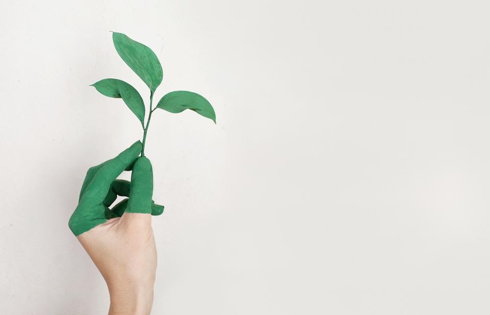 Made in Germany: Welche Rolle spielt Nachhaltigkeit?