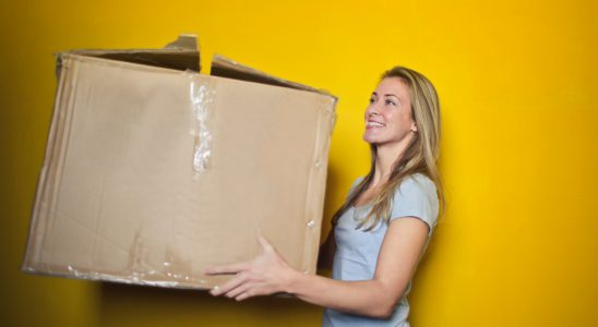 Der Online-Handel kann in der Corona-Krise die Versorgung mit Waren gewährleisten. Abbildung: Pexels