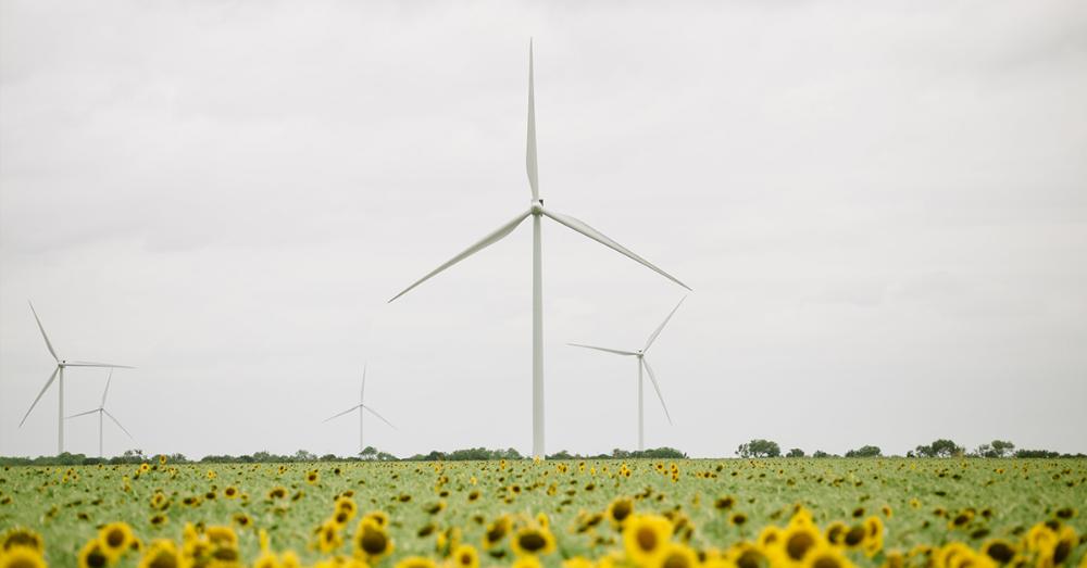 Signify bezieht seinen Strom zu 100 Prozent aus erneuerbarer Energie. Abbildung: Signify